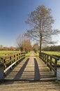 Free Rijswijk Park Royalty Free Stock Photography - 4362137