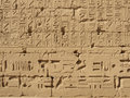 Free Hieroglyphs In Karnak Temple Royalty Free Stock Photo - 4369425