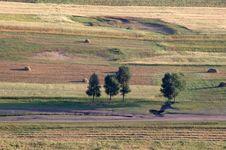 Free Grassland Royalty Free Stock Photo - 4360465