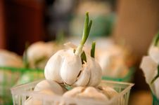 Free Fresh Garlic For Sale In A Basket Royalty Free Stock Photo - 4360725
