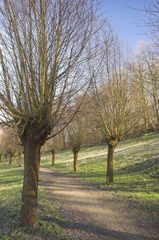 Free Rijswijk Park Stock Photography - 4361892