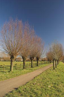Free Rijswijk Park Royalty Free Stock Image - 4362196