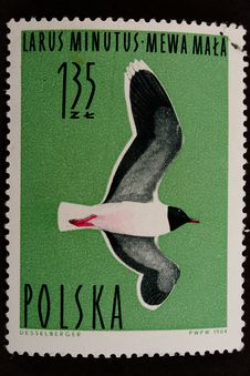 Free Used Old Stamp With Bird Stock Photography - 4362732