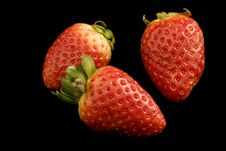Free Strawberries Royalty Free Stock Photography - 4362907
