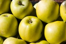 Free Apples Royalty Free Stock Photo - 4363875