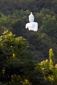 Free Buddhas In The Jungle. Royalty Free Stock Photo - 4364385