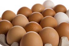 Free Eggs Stock Image - 4367151