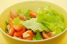 Free Salad Stock Images - 4367274