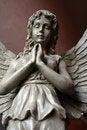 Free Angel Statue 4 Stock Photo - 4374970