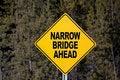 Free Narrow Bridge Ahead Stock Photos - 4378173