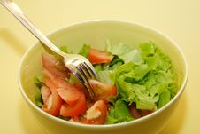Free Salad Stock Photo - 4371010