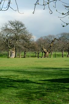 Greenwich Park In London Royalty Free Stock Photo