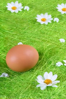 Free Easter Egg Stock Photography - 4379252