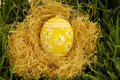 Free Painted Easter Egg In Nest Royalty Free Stock Image - 4380356