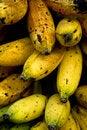 Free Ripe Bananas Royalty Free Stock Image - 4387086