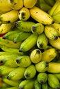Free Ripe Bananas Royalty Free Stock Photography - 4387217