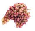Free Grape Stock Photo - 4388460