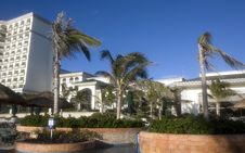 Free Windy Resort Palm Trees Royalty Free Stock Photo - 4380865
