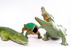 Free Crocodiles And  Reptiles Royalty Free Stock Photos - 4381558