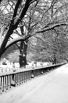 Free Boston Winter Stock Photos - 4381593
