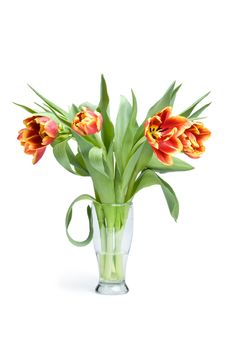 Free Red Tulips In Vase Royalty Free Stock Images - 4382539