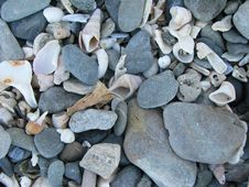 Close Up Of Stones On Beach Royalty Free Stock Images