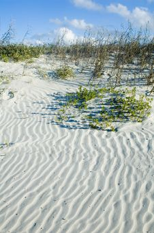 Free Ripples In Sand Royalty Free Stock Image - 4385416