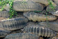 Free Tire Rockery Stock Photo - 4386230