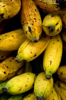 Free Ripe Bananas Royalty Free Stock Image - 4387086