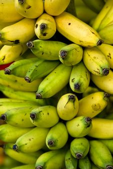 Free Ripe Bananas Royalty Free Stock Photography - 4387217