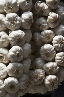 Free Garlic Stock Photo - 4387620