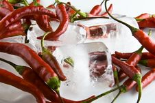 Free Red Chili On Ice Stock Photography - 4387872
