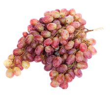 Free Grape Stock Photo - 4388460