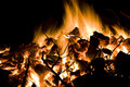 Free Toasty Fire Royalty Free Stock Image - 4395176