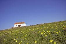 Free Old Portuguese House Stock Photography - 4391712