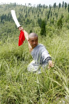 Free Chinese Kung Fu Royalty Free Stock Photography - 4391837