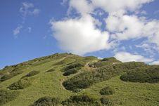 Free Typical Alentejo Landscape Royalty Free Stock Photo - 4392145