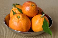 Free Oranges Stock Images - 4392194
