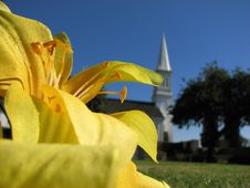 Free Yellow Flower And Church Stock Photo - 4392700