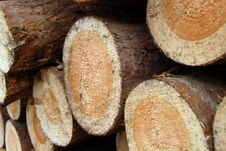 Free Wood Piles Stock Image - 4393051