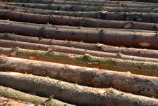 Free Wood Piles Stock Images - 4393244