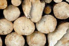 Free Wood Piles Royalty Free Stock Photo - 4393365