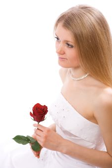 Young Bride With Rose Stock Photo