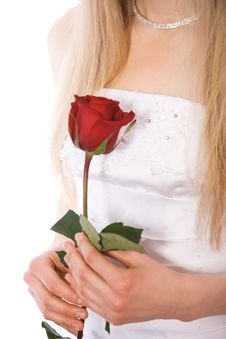 Free Close-up Bride Hands With Red Rose Royalty Free Stock Images - 4397699