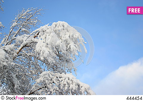White snow and blue sky Stock Photo