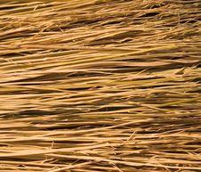 Broom Bristles Royalty Free Stock Image