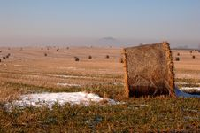 Free Winter Landscape With Bundles Royalty Free Stock Images - 441519