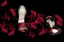 Free Flamenco Passion Royalty Free Stock Images - 442379