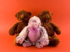 Two Bears And A Monkey Royalty Free Stock Image
