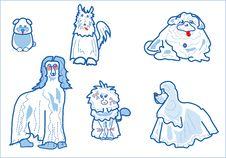 Free Pets Stock Photo - 443250